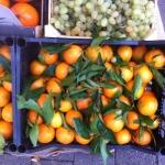Hessische Mandarinen