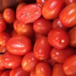 Roma-Tomaten